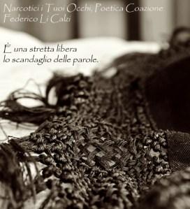 """""""Narcotici i tuoi occhi"""", di Federico Li Calzi, tratta da """"Poetica Coazione"""" – recensione"""