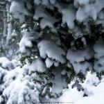 """""""Neve d'estate"""" di Alessandro Erato, parole ed immagini"""