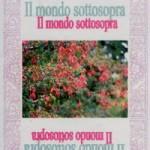 """Intervista di Alessia Mocci a Maristella Angeli ed al suo """"Il mondo sottosopra"""", Rupe Mutevole Edizioni"""