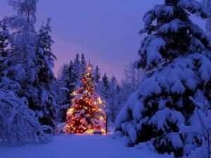 """""""Il Natale di Melissa"""", racconto di Rebecca Mais"""