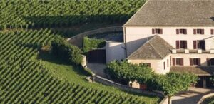 Borgogna - vini