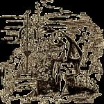 """""""Cenerentola"""" dei Fratelli Grimm: come una fenice che rinasce dalla cenere"""