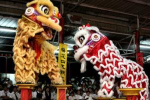 Danza del Leone - Festival dell'Oriente