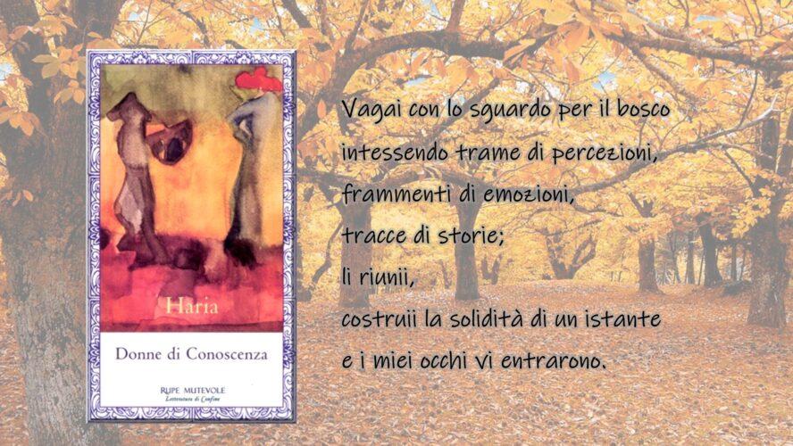 """""""Donne di Conoscenza"""" di Haria: alcune citazioni tratte dal libro edito da Rupe Mutevole Edizioni"""