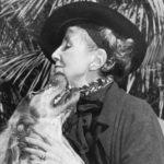 """Vera"" di Elizabeth von Arnim: la passione raccontata da una sorta di ménage à trois"