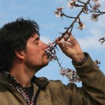 """""""Dal proprio nido alla vita"""" di Fabio Strinati: un poemetto tra sogno e realtà"""