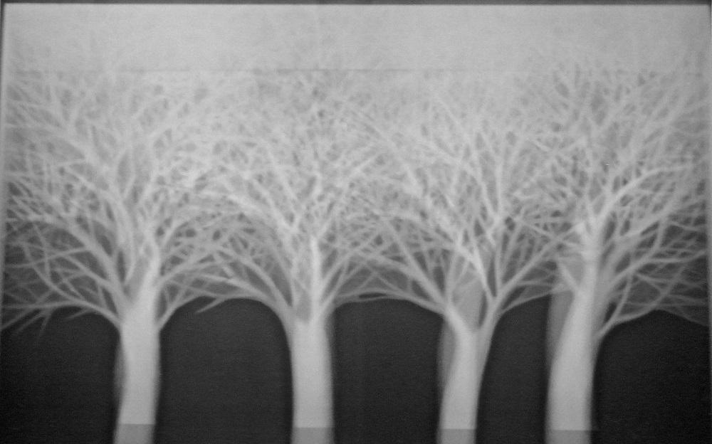 """""""Heima"""", la mostra delle opere inedite di Jolanda Spagno, dal 14 al 30 maggio, Galleria Fondaco, Roma"""
