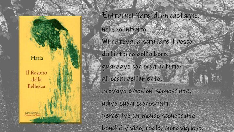 """""""Il Respiro della Bellezza"""" di Haria: alcune citazioni tratte dal libro edito da Rupe Mutevole Edizioni"""