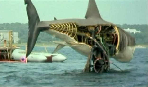 Life after death l intervista a bruce lo squalo bianco - Dietro la porta chiusa film completo ...