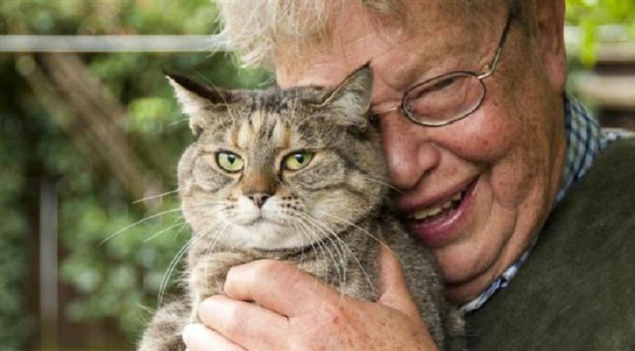 """""""Il vecchio e il gatto"""" di Nils Uddenberg: l'amore tra un anziano insegnante ed un felino"""