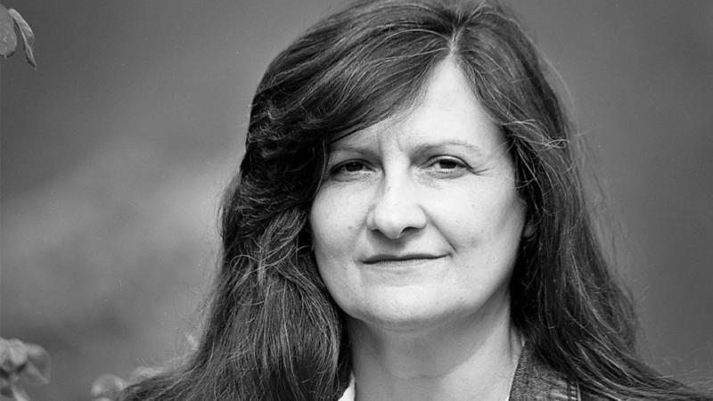 """""""Percezione imperfetta dei pericoli"""" di Normanna Albertini: una sincera ricerca della bellezza"""