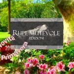 Le novità editoriali primaverili della casa editrice Rupe Mutevole Edizioni