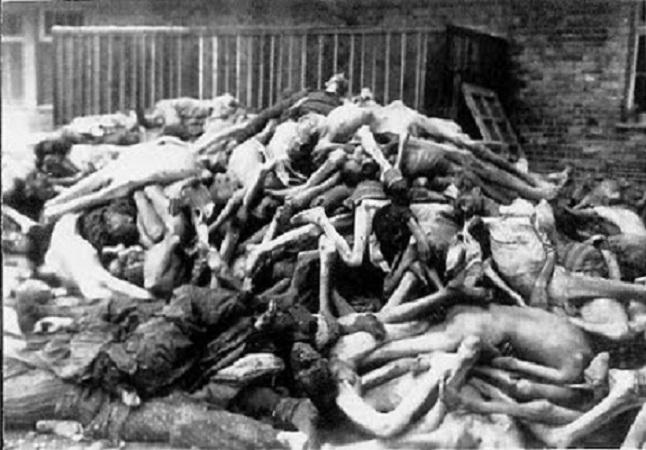 La libertà d'espressione a senso unico: negare l'olocausto è reato