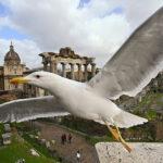 Roma: un viaggio nella Capitale alla scoperta del disagio post Impero