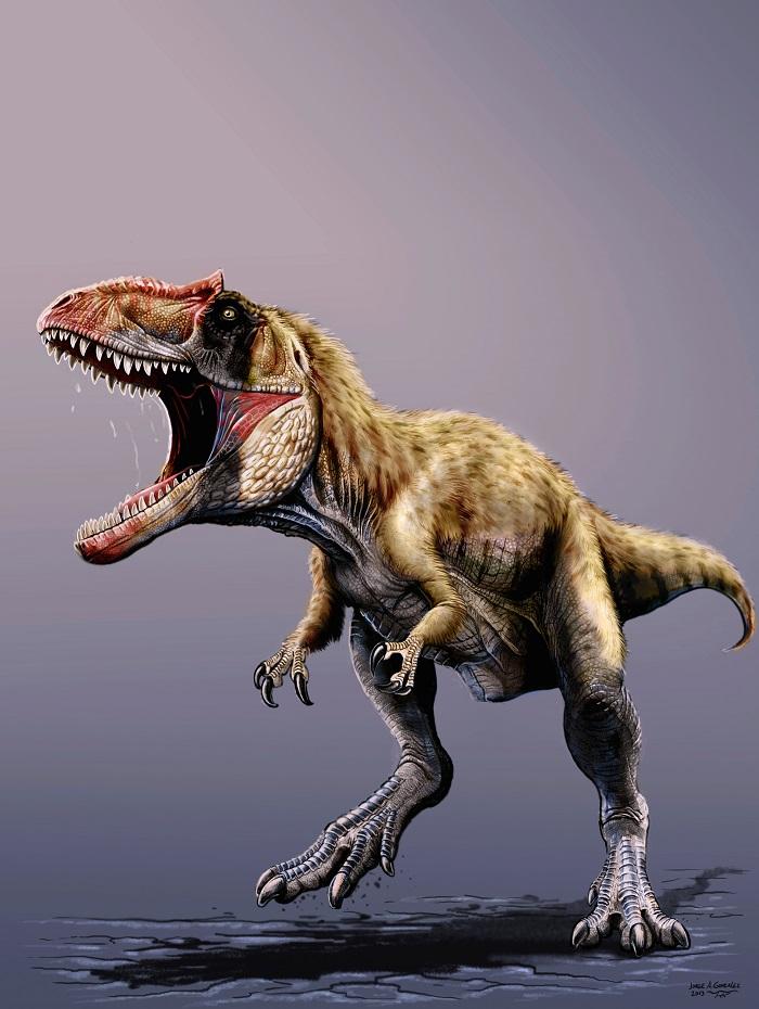 Scoperto un nuovo dinosauro di enormi dimensioni: soprannominato Siats Meekerorum, è vissuto prima del T-Rex