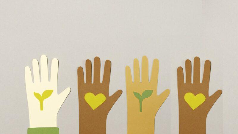 Sostenibilità: quattro gesti per aiutare l'ambiente