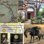 Il tè Pu Erh, protagonista dell'antica Via del Tè e dei Cavalli che univa lo Yunnan all'India