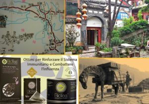 Te Pu Erh - via del tè e dei cavalli