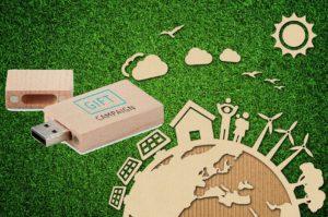 Usb in legno - azienda sostenibile