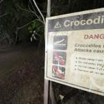 Australia: ragazzo sbranato da un coccodrillo ad una festa di compleanno