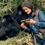 In ricordo di Dian Fossey: la mamma dei gorilla africani di montagna