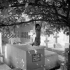 Il cimitero di Manila nelle Filippine: quando i vivi scelgono di aver come case le tombe