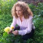 """La custode del miele e delle api"" di Cristina Caboni: una storia di coraggio ambientata in una magica Sardegna"