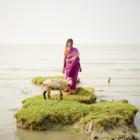 """""""Ghoramara – Sulla riva di un'isola che svanisce"""", la personale di Daesung Lee sino al 25 maggio a Milano"""
