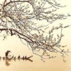 Lo Haiku: come nasce il genere poetico più famoso del Giappone