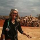 """""""Sognavo l'Africa"""", libro di Kuki Gallmann: una scrittrice definita come la Karen Blixen italiana"""