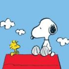 I Peanuts: la vita quotidiana e la dualità nei fumetti di Charles Monroe Schultz