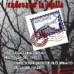 """""""Quando dal cielo cadevano le stelle"""", romanzo di Sofia Domino: un'opera narrativa per ricordare"""
