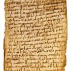 """Il """"Coranus Arabicus"""": la scoperta della docente Angela Nuovo"""