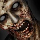"""In libreria """"Tuono e Cenere"""" secondo libro della saga Epidemia Zombie di Zachary Allen Recht"""