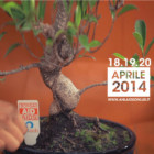 """Pasqua con """"Bonsai Aid Aids"""": dal 18 al 20 aprile tremila banchetti in tutta Italia per la lotta contro l'AIDS"""