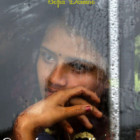"""Intervista di Bernadette Amante a Sofia Domino, autrice del libro """"Come lacrime nella pioggia"""""""