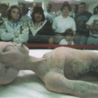 Crazy: Casalinga cieca allatta cucciolo alieno senza saperlo