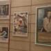 Il Cinema Armenise di Bari compie sessant'anni: il cinema non invecchia mai