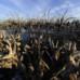 Città abbandonate: Villa Epecuen per 25 anni sotto le acque del lago salato