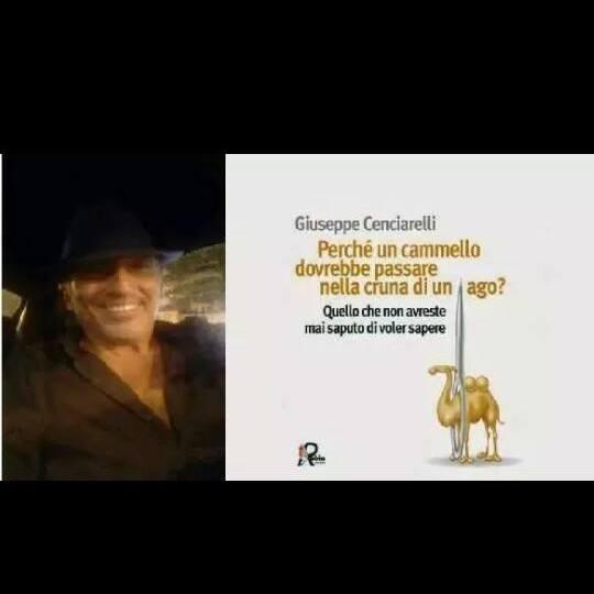 """""""Perché un cammello dovrebbe passare nella cruna di un ago?"""" di Giuseppe Cenciarelli: tutto quello che non avremmo mai saputo di voler sapere"""