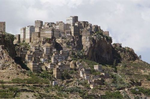 Socotra: le piante rare dell'isola dello Yemen